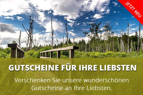 Gutschein-DE